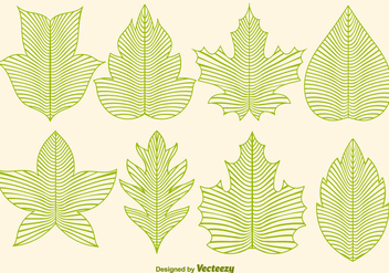 Vector Leaf Icons In Line Style - Free vector #376161