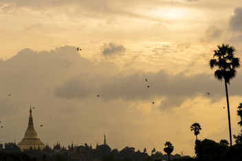 Sunset Over Shwedagon Pagoda - image #376741 gratis