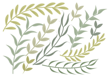 Vector Green Branches Set - Kostenloses vector #377651