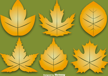 Vector Set Of Six Autumn Leaf - Free vector #378241
