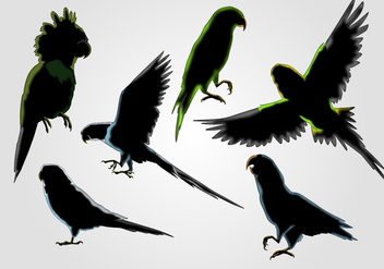 Budgie Silhouette Vector Set - Free vector #378391