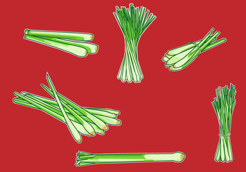 Lemongrass Illustration Vector - vector gratuit #378401