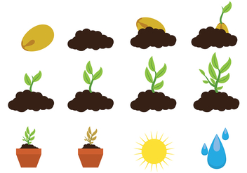 Grow Up Plant Icon Vector - Free vector #380261