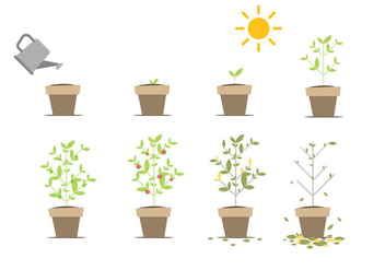 Free Grow Up Vector - vector #380411 gratis
