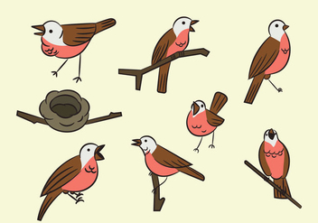 Free Cartoon Nightingale Bird - vector #380691 gratis