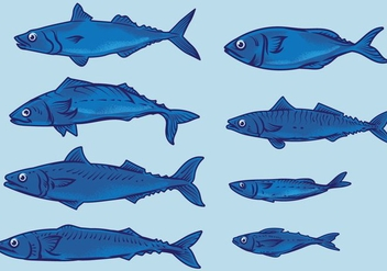 Mackerel Fish - vector gratuit #381811