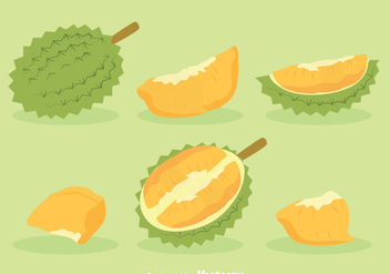 Durian Fruit Vector - бесплатный vector #383571