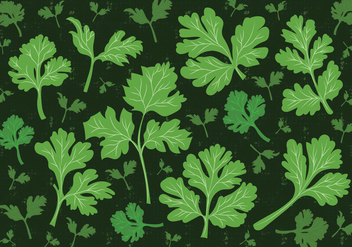 Cilantro Leaf Vector Background - Free vector #383781