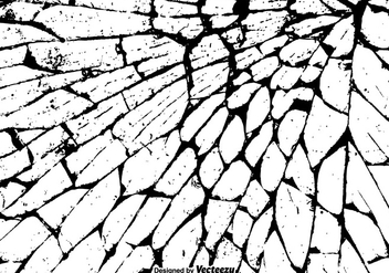 Free Grunge Cracked Texture Vector - Free vector #384701