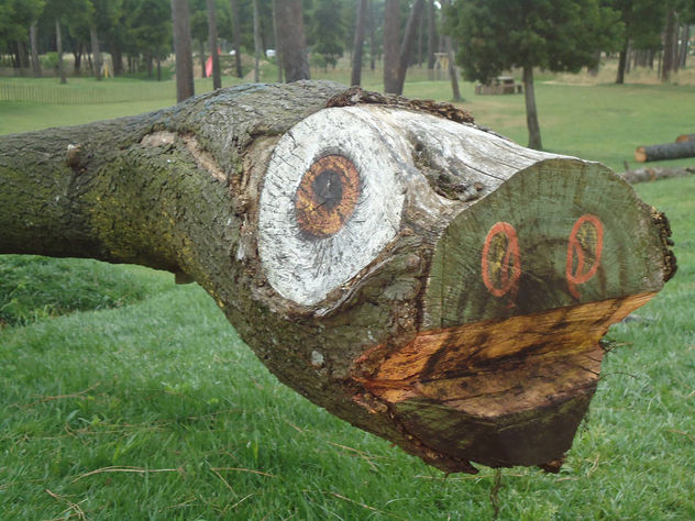 Funny Tree Trunk - Kostenloses image #385211