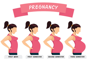 Pregnancy Illustration - Free vector #386041