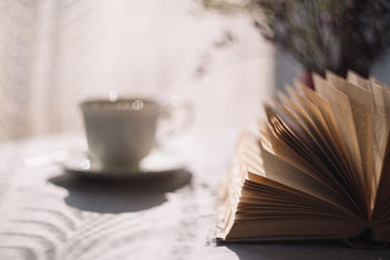 Open book and a cup of tea - бесплатный image #387561
