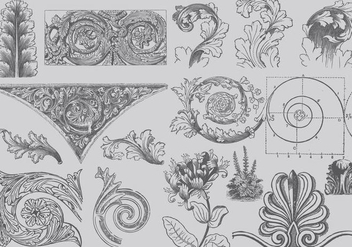 Acanthus Decor - Free vector #388331