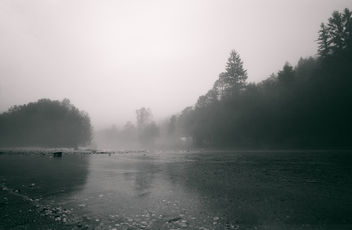 A Foggy Morning - image #388581 gratis
