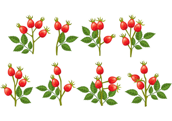 Rosehip icons - vector #392451 gratis
