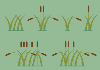 Reeds Vector Illustrations - бесплатный vector #392521