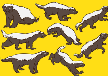 Honey Badger Cartoon - vector gratuit #393611