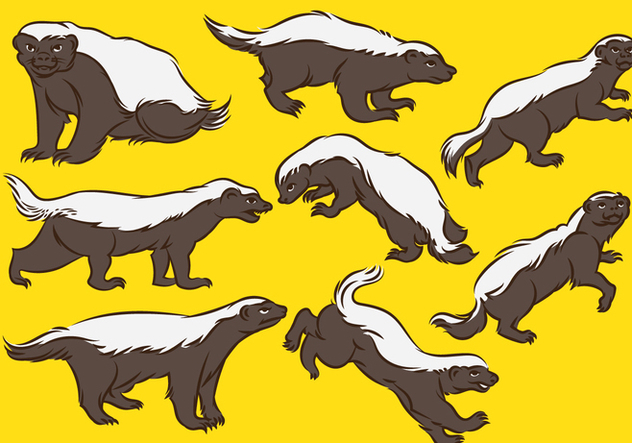 Honey Badger Cartoon - Free vector #393611