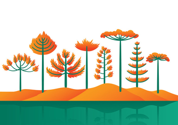 Araucaria Cartoon Vector - Free vector #394021