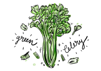 Free Celery Watercolor Vector - vector gratuit #395031