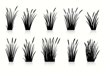 Free Cattails Silhouette Vectors - Free vector #396101