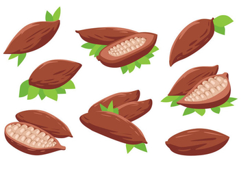 Free Cocoa Beans Vector - Free vector #396221