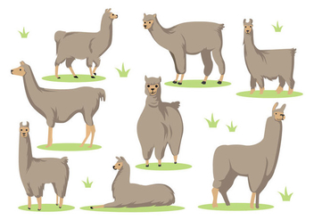 Free Llama Cartoon Vector - vector gratuit #396851