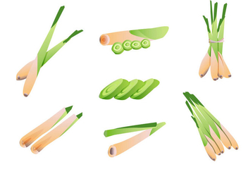 Lemongrass Vector Pack - Kostenloses vector #396861