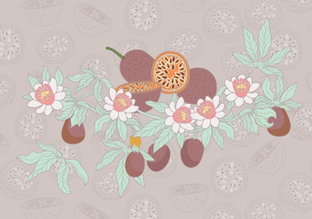 Passion Fruit Simple Vector - Kostenloses vector #397391