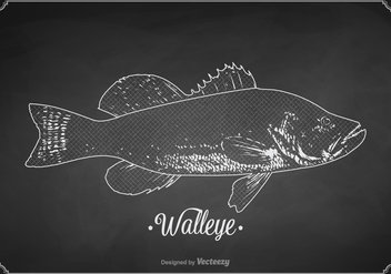 Free Chalk Drawn Walleye Vector - бесплатный vector #398771