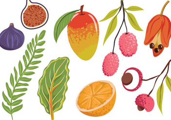 Free Exotic Fruit Leaves Vectors - vector #399521 gratis