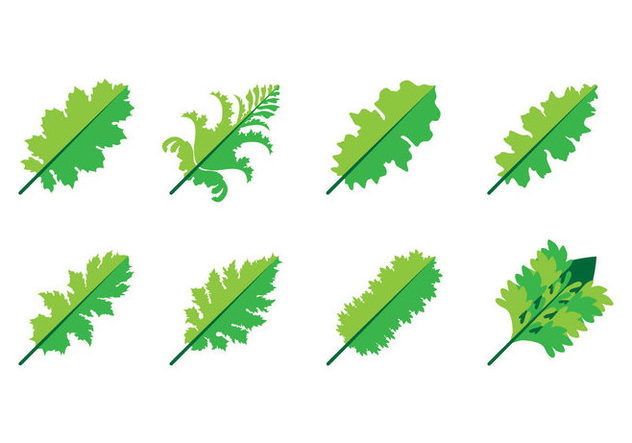 Free Acanthus Leaf Icon Vector - vector gratuit #399831