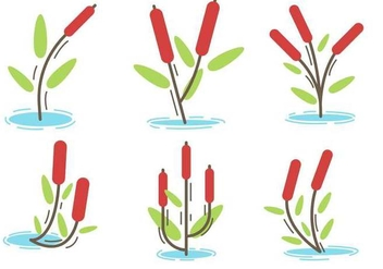 Free Cattails Vector - Free vector #401341