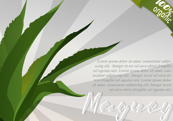 Sunburst Maguey Background - Free vector #403211