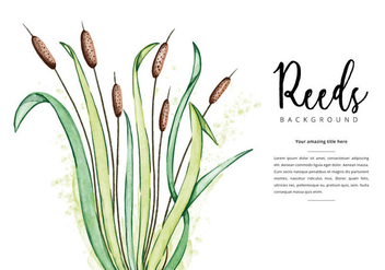 Free Reeds Background - vector #403601 gratis
