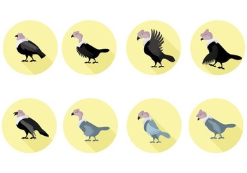 Free Condor Vector Illustration - Kostenloses vector #405601
