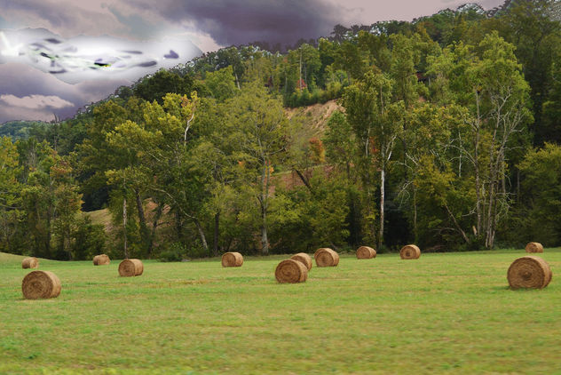 Drivin round bales (3) copy - Free image #406211