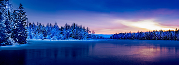 Winter at Irishtown Reservoir - image gratuit #408241
