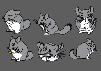 Chinchilla Vector Pack 1 - Kostenloses vector #408851