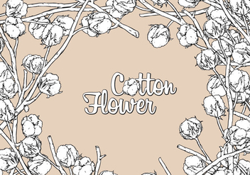 Cotton Flower Hand Drawing Free Vector - Kostenloses vector #410201