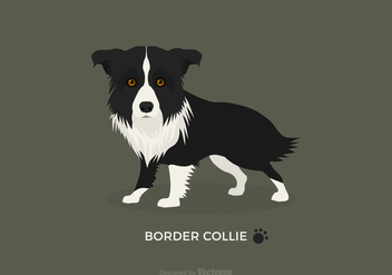 Free Vector Border Collie - vector gratuit #410511