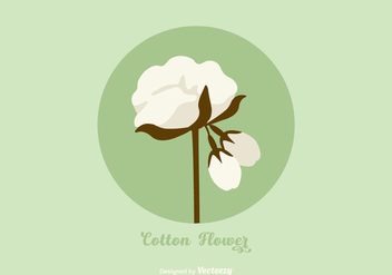 Free Vector Cotton Flower - бесплатный vector #411641