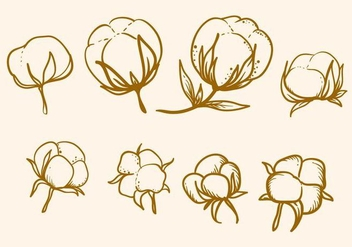 Free Hand Drawn Cotton Flower Vector - vector gratuit #412241