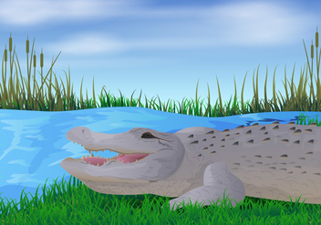 Gator In The River Illustration - бесплатный vector #412351