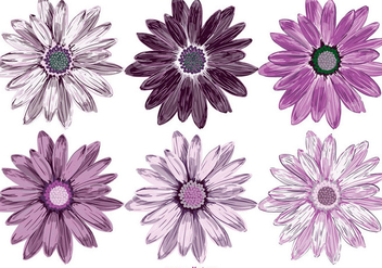 Vector Flowers Collection - vector gratuit #417001