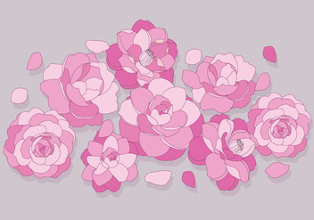 Camellia Flowers Vector - Free vector #417471