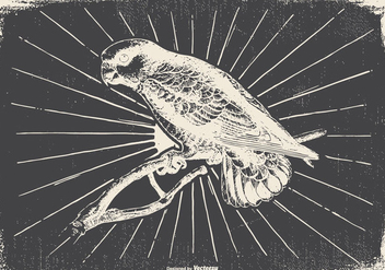 Vintage Bird Illustration - Free vector #418121