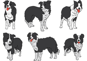Free Border Collie Icons Vector - Kostenloses vector #418691