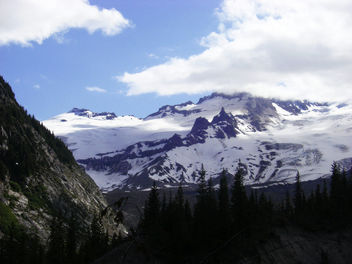 Mount Rainier National Park - Kostenloses image #419601
