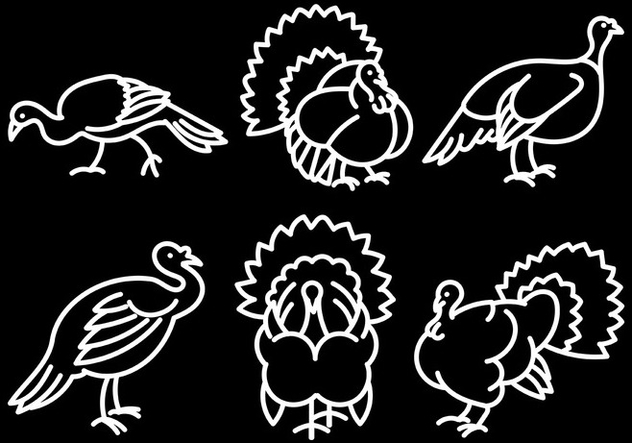 Free Wild Turkey Icons Vector - Free vector #420151